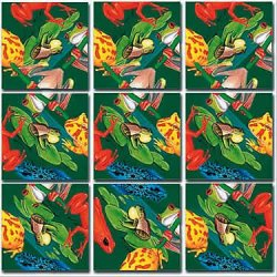 9 Piece Puzzle - Frogs