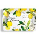 Michel Design Works Lemon Basil Melamine Medium Rectangular Tray Style #SWTM8