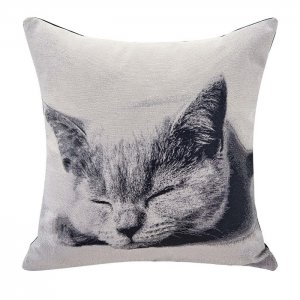 Accent Pillow - Cat Square