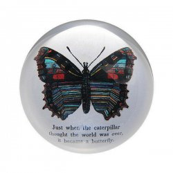 Paperweight - Butterfly