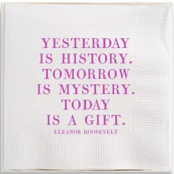 Box of 40 Cocktail Napkins - Eleanor Roosevelt