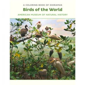 Coloring Book - Birds of the World