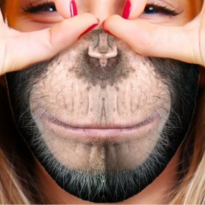 Adult Face Mask - Monkey Business